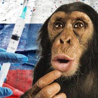 DARWIN THEORY REVERSED: In Covid Era people are being turned into Obedient Monkeys.. And they even volunteer for it!